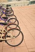 自転車レンタル — ストック写真