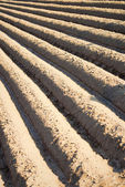 Deep freshly ploughed furrows — Foto Stock