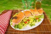 Snake sandwich with fresh salad — Stock Photo