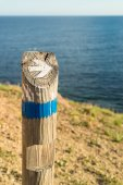 Wooden hiking guidepost — Stock Photo
