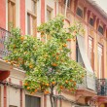 Valencia Cabanyal district — Stock Photo #67004451
