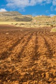 Deeply furrowed soil — Stock Photo