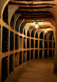 Wine bottles in the cellar — Stock Photo