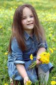 Girl gathering dandelions — Stock Photo