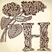 Hydrangea — Stock Vector