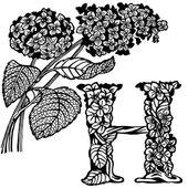绣球花 — 图库矢量图片