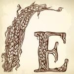 Ears brown litera E — Stock Vector #58372891