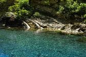 Transparent mountain stream — Stock Photo