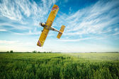 Airplane flies over a wheat field spraying fungicide and pestici — Stock Photo