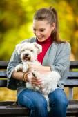 Smiling girl  holding cute maltese dog — Zdjęcie stockowe