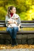 Young woman with a maltese dog — Zdjęcie stockowe