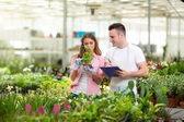 Young botanists  in greenhouse — Stock Photo