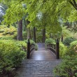 Moon Bridge at Japanese Garden — Stock Photo #62749641