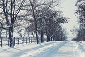 Snowy road by the fence on a sunny day — Stock Photo