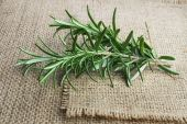 fresh rosemary — Foto Stock
