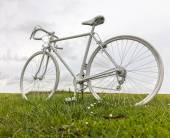 Old White Bicycle in a Field — Foto de Stock