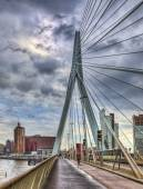 Erasmus Bridge - Rotterdam — Stock Photo