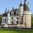 Chenonceau Castle — Stock Photo #54957437
