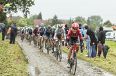 The Cyclist Lars Bak on a Cobbled Road - Tour de France 2014 — Stock Photo