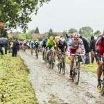 Постер, плакат: The Peloton on a Cobbled Road Tour de France 2014