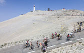 Amateur Cyclists on Mont Ventoux — Stock Photo