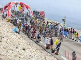 The Peloton on Mont Ventoux — Stock Photo