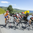 Group of Amateur Cyclists — Stock Photo #62418681