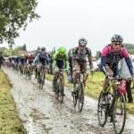 The Peloton on a Cobbled Road- Tour de France 2014 — Stock Photo #67858215