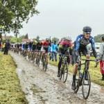 The Peloton on a Cobbled Road- Tour de France 2014 — Stock Photo #67858217