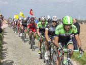 The Peloton- Paris Roubaix 2014 — Stock Photo