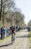 Aleksejs Saramotins in The Forest of Arenberg- Paris Roubaix 201 — Stock Photo