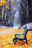 Golden autumn in park — Stock Photo