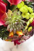 Zblízka kytice nevěsty — Stock fotografie