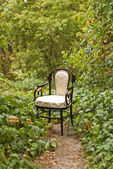 Vintage chair in the autumn park — Stock Photo