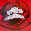 Diamond ring in Red rose — Stockfoto #53032185