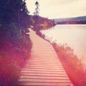 Pathway near lake — Stock Photo