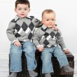 Two Cute little boys pose sitting — Stock Photo #53172591