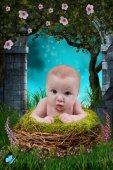 Baby in nest — Stock Photo