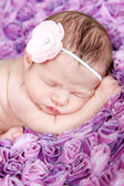 Newborn Girl sleeping on purple blanket — Stock Photo