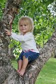 Holčička na stromě — Stock fotografie