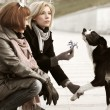 Two happy young fashion women and a dog — Stock Photo #52251259