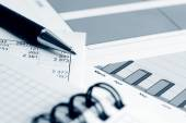 Financial accounting graphs and charts — Foto Stock