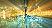 Biodiversity wordcloud concept illustration glowing — Stock Photo