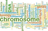 Chromosome wordcloud concept illustration — Stock Photo