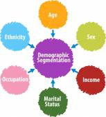Demographic segmentation business diagram illustration — Stock Photo
