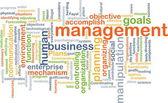 Management wordcloud concept illustration — Stock Photo