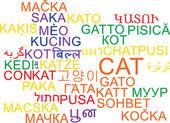 Cat multilanguage wordcloud background concept — Stock Photo