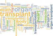 Organ transplant wordcloud concept illustration — Stock Photo