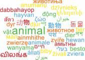 Animal multilanguage wordcloud background concept — Stock Photo