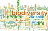 Biodiversity wordcloud concept illustration — Stock Photo